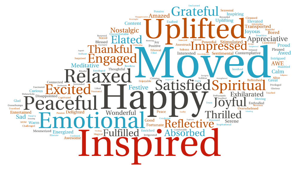 Word Cloud of 14/15 survey responses